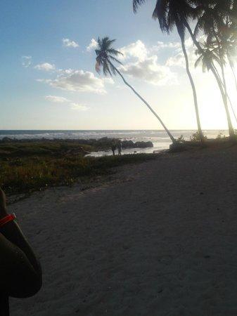 Coop Marena Beach Resort: Hermoso atardecer.