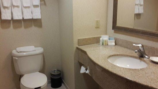 Hampton Inn & Suites Newark-Harrison-Riverwalk : Baño implecable