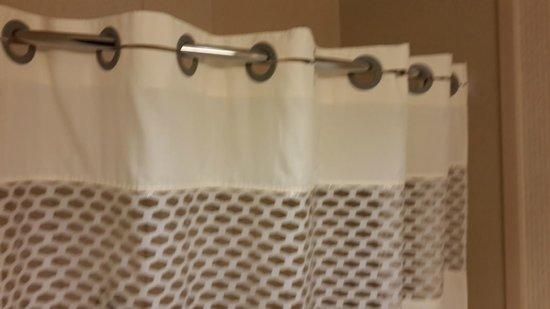 Hampton Inn & Suites Newark-Harrison-Riverwalk : Bonita Cortina de baño