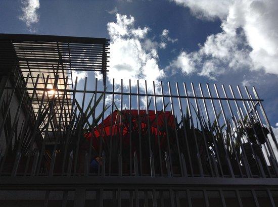Casa Posada Amelia: Terraza bonita