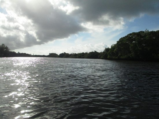 Manatee Park: Headed upstream