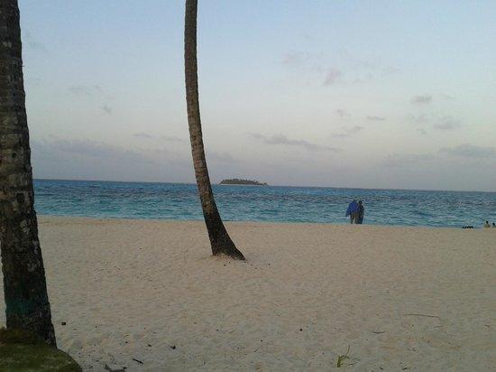 Decameron Isleño: playa al frente del hotel