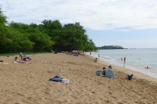 Honua Kai Resort & Spa: Honua Kai beachfront