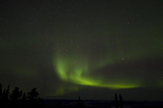 Aurora Borealis Lodge : aurora watching