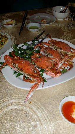 Nhat Phong 3 Seafood Restaurant : Fresh