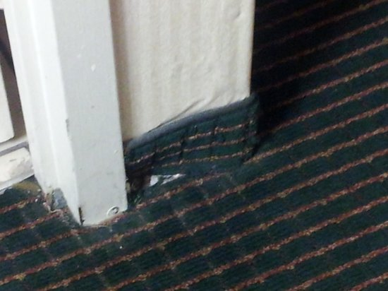 Days Inn & Suites Vicksburg: roaches coming out of this hole...remodeled my a**...ever heard of an exterminator? or RAID?