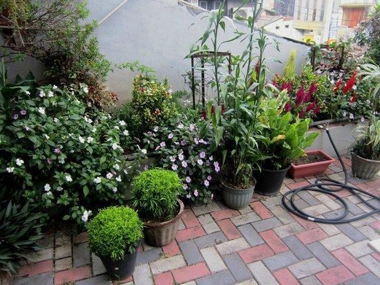 Sevana City Hotel: Roof-top garden