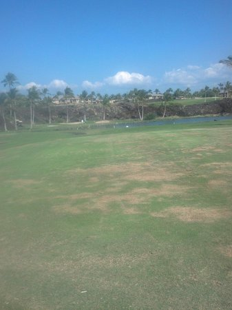 Waikoloa Beach Golf Course: 17th hole - resort tee box area.