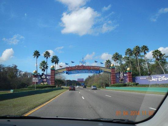 Walt Disney World: disney world