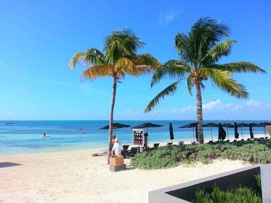NIZUC Resort and Spa : Main beach