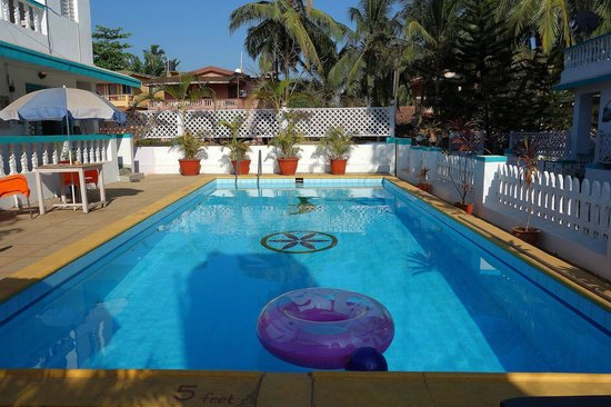 Maggie's Haven Boutique Guest House: The welcoming pool...
