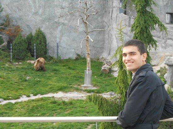 Helsinki Zoo: смотровая площадка