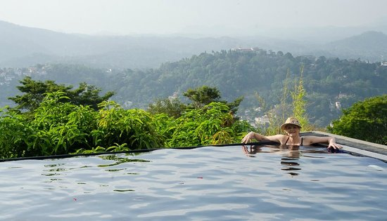 Theva Residency: the plunge pool