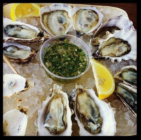 Hog Island Oyster Company : On The Half Shell