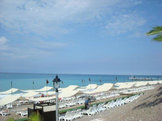 Botanik Hotel & Resort: бассейн