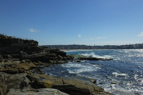 Bondi to Coogee Beach Coastal Walk: coastal walk
