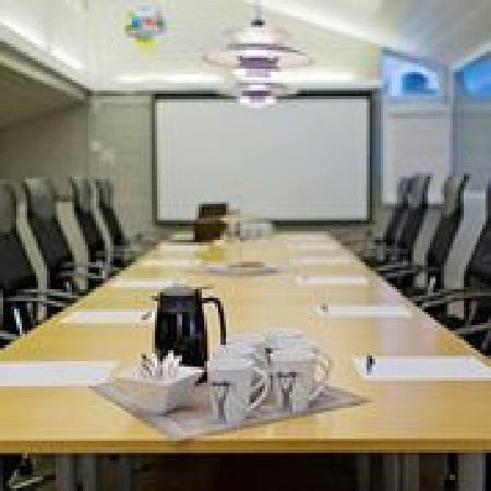 Eidfjord Fjell & Fjord Hotel: Meeting room