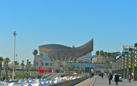 Hotel Arts Barcelona: view from the marina