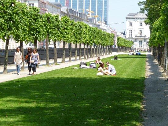 Parc de Bruxelles : Лужайка
