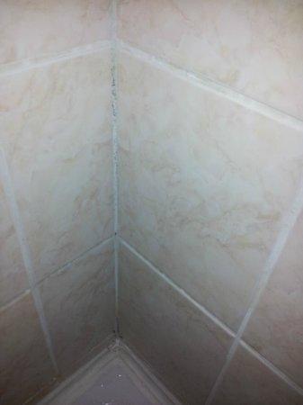 Hotel Szieszta Sopron: Dusche WC Schimmel und Dreck!