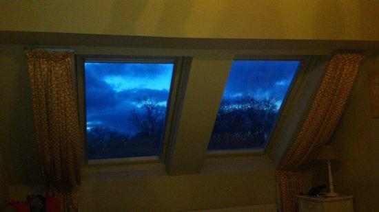 Botaniek  Hotel: Огромные окна