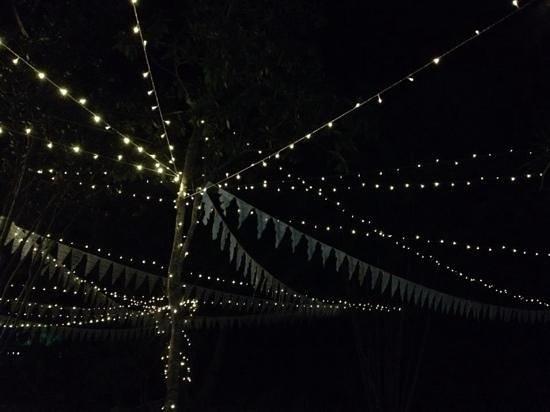 Penny Lane Gardens Restaurant: we loved the lights