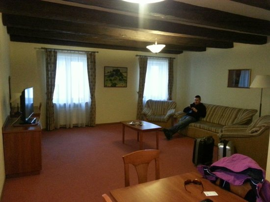 Krakow City Apartments : very very big living room