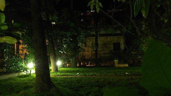 Shalom Guest House : сад, причем очень красивый