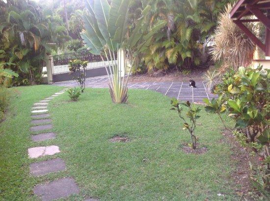 Habitation Grande Anse: giardino entrata camera