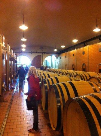 Vinitour Centre-Loire : De vinificatie