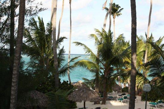Grand Palladium Punta Cana Resort & Spa: Вид из номера