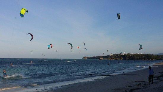 7Stones Boracay Suites : Kite surfing at Bulabog