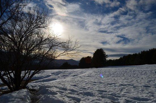Reserve Biologique des Monts d'Azur : soleil sur la neige