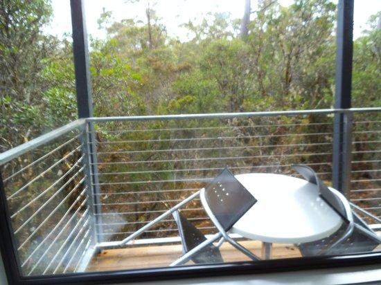 Cradle Mountain Wilderness Village: What a view total bush
