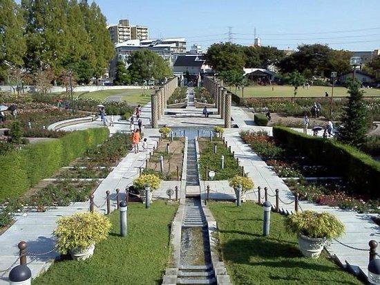 Aramaki rose garden : 荒牧バラ公園