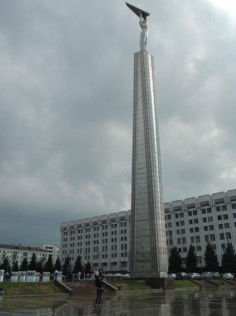 Ibis Samara: Площадь