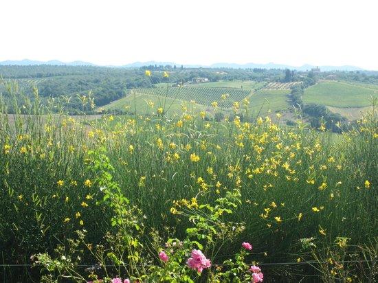 Villa il Castagno Wine Resort & Restaurant: vue sur les collines environnantes