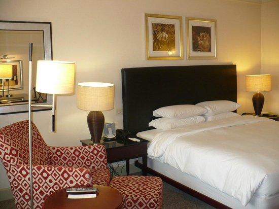 Hyatt Regency Johannesburg : room