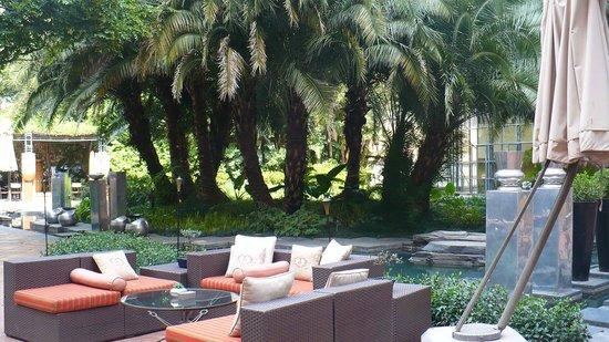 Hyatt Regency Johannesburg : lounge / pool