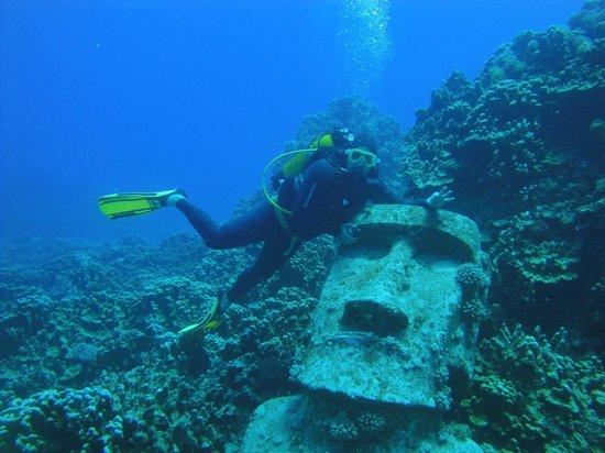Cabanas Tokerau : Buceando, excelente buceo con Eduardo, Buceo con ORCA