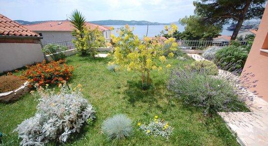 Tonina Apartments: An oasis of greenery
