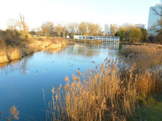 Im Donaupark