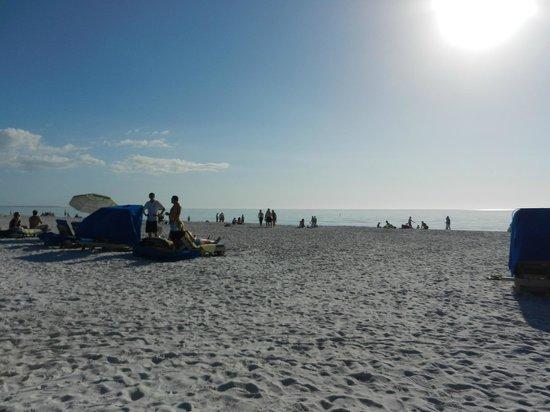 Sirata Beach Resort: view from beach chairs
