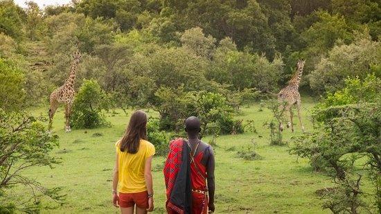 Kilima Camp: vue sur le bush à une centaine de mètres de la chambre