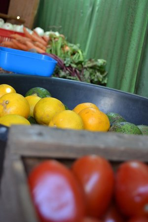 La Casa de Alicia: Fresh Vegetables - Cleaned and used in your Meal and Also for Sale