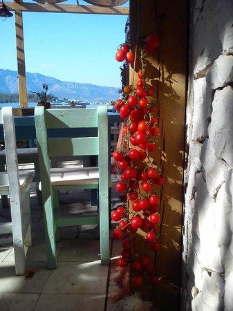 The pleasant surroundings of our tavern Konoba Fjaka