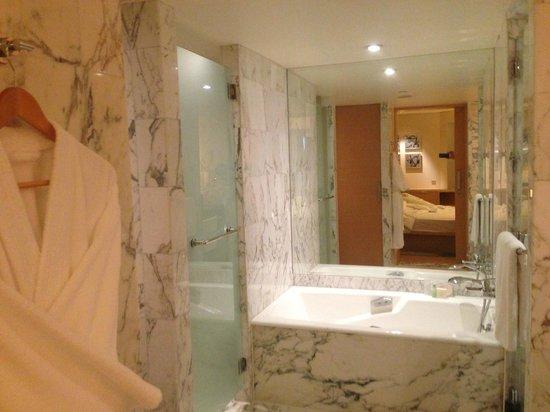 Grand Hyatt Singapore : Nice Bathroom, great water pressure