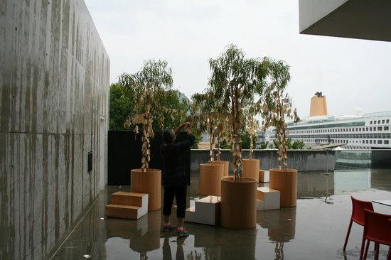 Museum of Contemporary Art: Yoko Ono Wishing Tree Instillation 2014