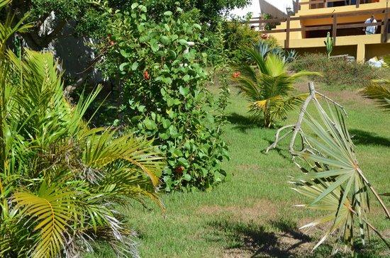Pousada de Charme Outre Mer: Jardin