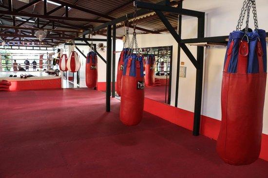 Supa Muay Thai: back bag area
